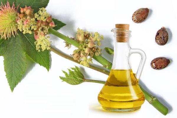 Ali ricinusovo olje res tako dobro očisti pore v koži?